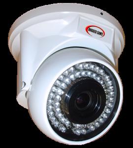 freezer cam 270x300 - Infrared FreezerCam Designed To Thrive In Cold Storage