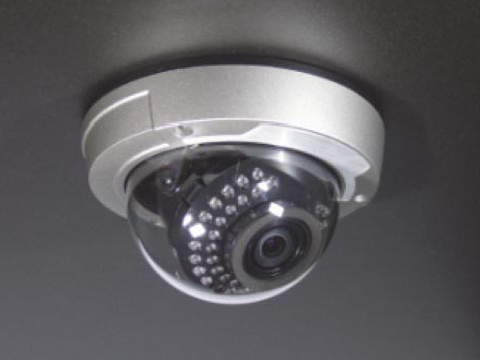 flush mount - Sentry Dome Camera