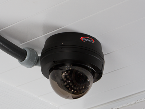 sentry flex conduit - Sentry Dome Camera