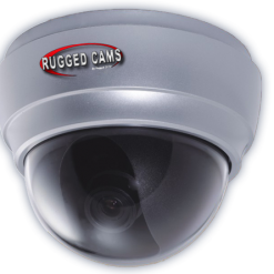 waterproof outdoor dome camera page img 247x247 - Neptune
