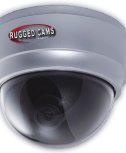 waterproof outdoor dome camera page img 247x300 - Neptune