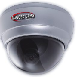 waterproof outdoor dome camera page img 256x256 - Neptune