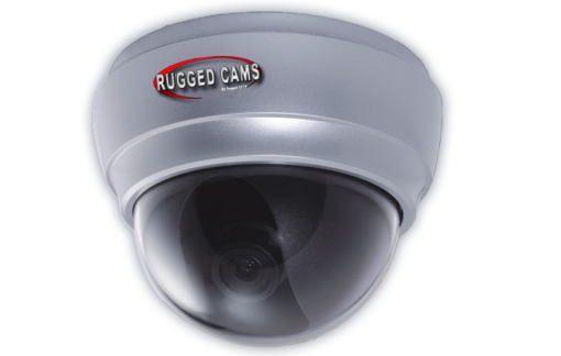waterproof outdoor dome camera page img 510x324 - Neptune