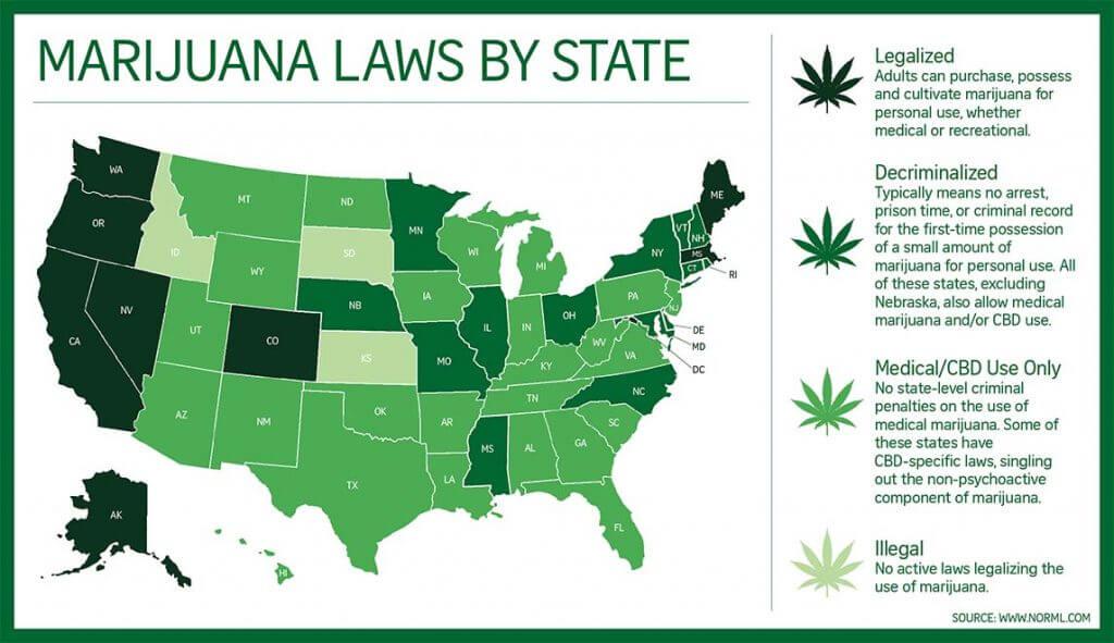 Cameras For Marijuana Grow Ops And Dispensaries