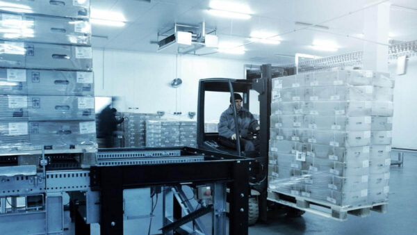 Cold Storage camera systems