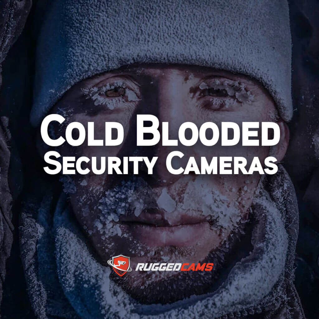 Cold Blooded Security Cams